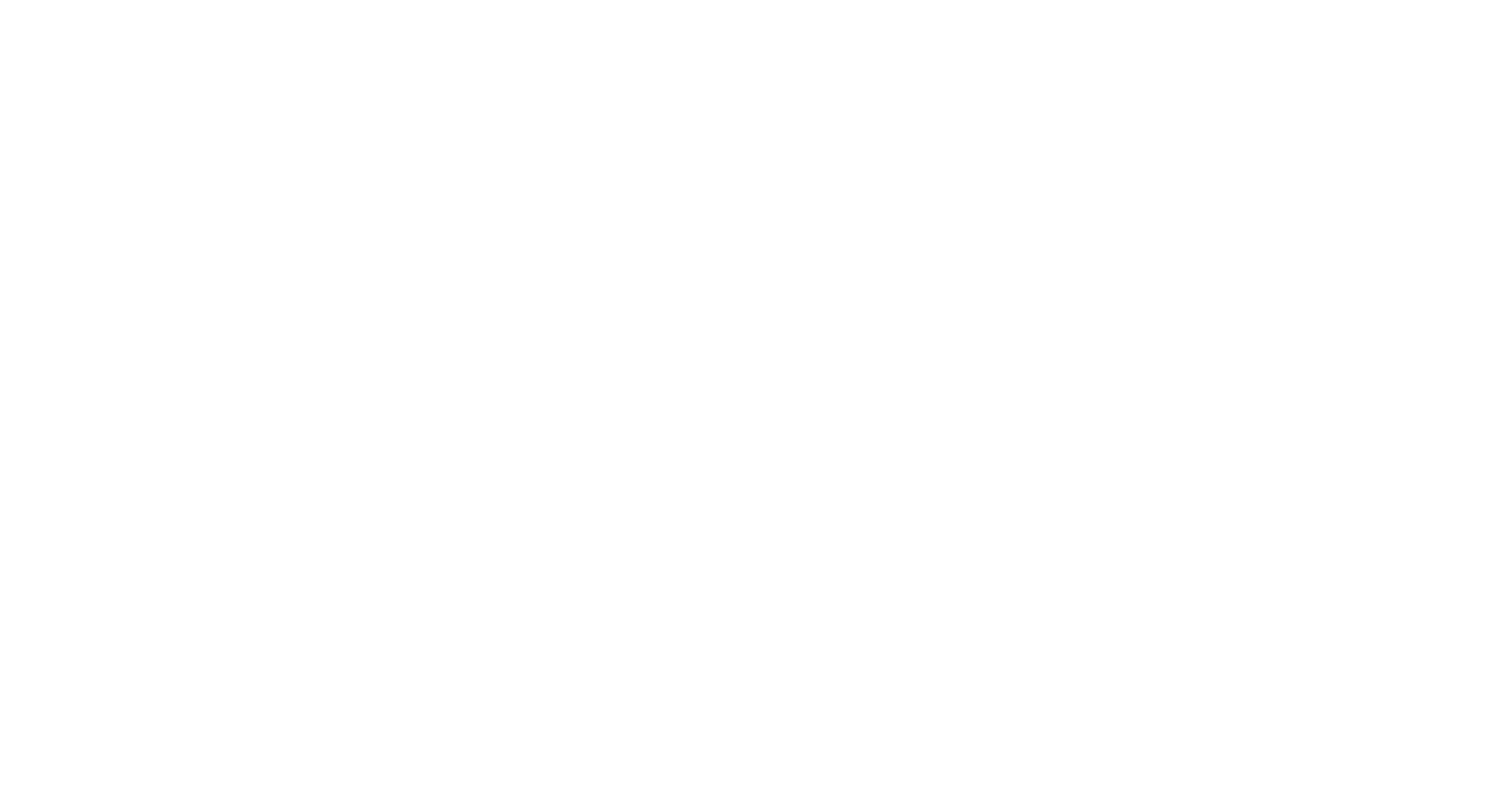 Arie'i Logo